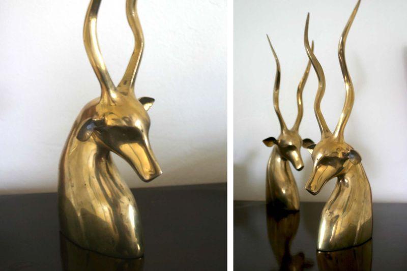 Deerfinal