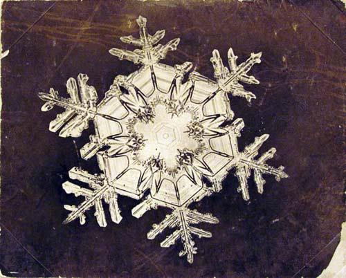 Snowflake-2_1563437i