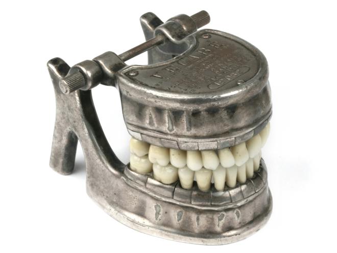 Dental-model-vecabe-101
